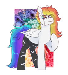 Size: 2468x2732 | Tagged: artist:jeshh, clothes, female, mare, oc, oc:color shy, pegasus, pony, safe, socks, solo