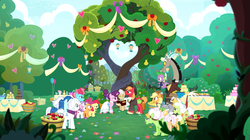 Size: 1433x802 | Tagged: safe, screencap, apple bloom, apple rose, applejack, auntie applesauce, big macintosh, burnt oak, cup cake, discord, double diamond, goldie delicious, grand pear, granny smith, mayor mare, night glider, party favor, scootaloo, spike, sugar belle, sweetie belle, cat, draconequus, dragon, earth pony, pegasus, pony, unicorn, the big mac question, apple, cake, clothes, cutie mark crusaders, dress, female, food, heartwarming, intertwined trees, male, marriage, shipping, straight, sugarmac, sweet apple acres, tree, user meltdown in the comments, wedding, wedding dress, winged spike