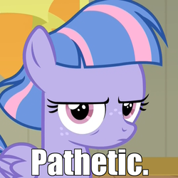 Size: 1024x1024 | Tagged: angry, angry eyes, caption, common ground, cropped, edit, edited screencap, female, filly, foal, freckles, grumpy, image macro, looking at you, pathetic, pegasus, pony, reaction image, safe, screencap, serious, serious face, solo, spoiler:s09e06, text, wind sprint, wind sprint is not amused