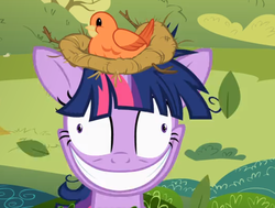 Size: 638x482 | Tagged: bird, crazy face, cropped, faic, grin, lesson zero, nest, safe, screencap, smiling, solo, twilight snapple, twilight sparkle