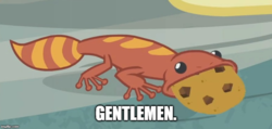 Size: 774x367 | Tagged: caption, cookie, cropped, edit, edited screencap, fire lizard, food, gecko, gentlemen, image macro, meme, safe, screencap, she talks to angel, spoiler:s09e18, team fortress 2, text