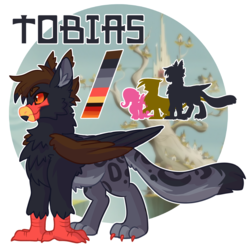 Size: 2975x2912 | Tagged: artist:cosmichorse, beak, chest fluff, claws, ear fluff, fluffy, griffon, griffon oc, oc, oc only, oc:tobias(cosmichorse), ref, reference, reference sheet, safe, simple background, solo, transparent