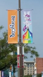 Size: 1836x3264 | Tagged: safe, photographer:lesliepone, pony, bronycon, banner, bronycon mascots, rainbow, united states