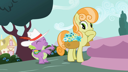 Size: 1280x720 | Tagged: ball, basket of flowers, dragon, earth pony, female, flower, fountain, hat, junebug, male, mare, pony, ponyville, safe, screencap, secret of my excess, spike, tree