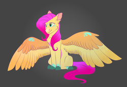 Size: 3800x2600 | Tagged: artist:glitterstar2000, cheek fluff, chest fluff, colored belly, colored fetlocks, colored hooves, colored wings, ear fluff, female, fluttershy, gradient background, head tilt, mare, pegasus, pony, safe, shoulder feathers, sitting, snip (coat marking), solo, spread wings, three quarter view, wings