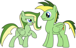Size: 1118x715 | Tagged: artist:didgereethebrony, bedroom eyes, brother and sister, cutie mark, female, male, mare, oc, oc:boomerang beauty, oc:didgeree, pegasus, pony, remake, safe, siblings, simple background, stallion, transparent background