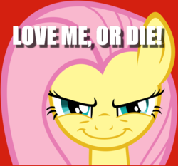Size: 900x838 | Tagged: anti-bronybait, bronybait, caption, death threat, evil grin, fluttershy, grin, image macro, safe, smiling, text, threat, yandereshy, you're going to love me