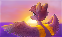 Size: 2001x1192 | Tagged: artist:sugarstar, looking at you, looking back, looking back at you, oc, oc only, oc:vee ness, pegasus, pony, safe, solo, spread wings, sunset, two toned wings, wings