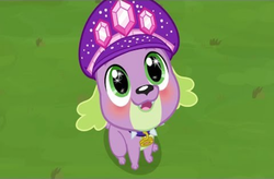 Size: 1455x956 | Tagged: safe, spike, spike the regular dog, dog, equestria girls, equestria girls series, lost and pound, spoiler:choose your own ending (season 2), spoiler:eqg series (season 2), blushing, choose spike, choose your own adventure, cute, hat, lost and pound: spike, smiling, solo, spikabetes, starry eyes, wingding eyes