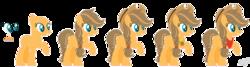 Size: 1751x469 | Tagged: safe, artist:nathy2001, artist:selenaede, oc, oc:apple dessert, earth pony, pony, bald, base used, cowboy hat, element of honesty, female, hat, mare, neckerchief, offspring, parent:applejack, parent:caramel, parents:carajack, raised hoof, reference sheet