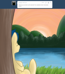 Size: 1000x1135 | Tagged: artist:shadowkixx, ask, ask sunray smiles, male, oc, oc:sunray smiles, pony, safe, solo, stallion, sunset, tumblr