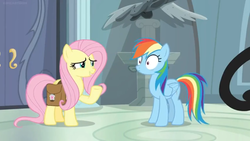Size: 1600x900 | Tagged: safe, screencap, fluttershy, rainbow dash, pegasus, pony, daring doubt, spoiler:s09e21, door, duo, duo female, female, mare, pedestal, saddle bag, statue, surprised