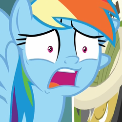 Size: 1079x1078 | Tagged: cropped, daring doubt, disbelief, faic, female, horrified, mare, open mouth, pegasus, pony, rainbow dash, rainbow dash is best facemaker, safe, say what, screencap, shocked, shrunken pupils, solo, spoiler:s09e21