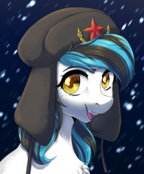 Size: 2256x2732 | Tagged: safe, artist:tigra0118, oc, earth pony, pony, artwork, bust, commission, female, hat, looking at you, my little pony, portrait, solo, ushanka
