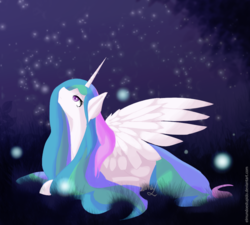 Size: 1000x900 | Tagged: alicorn, artist:wintershibe, cute, cutelestia, female, firefly (insect), looking up, mare, night, pony, princess celestia, profile, prone, safe, sky, solo, starry night, stars