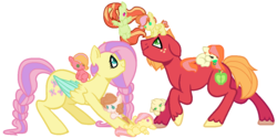 "Size: 1100x550 | Tagged: artist:theredbeauty, baby, baby pony, base used, big macintosh, blank flank, braid, braided tail, button eyes, colored wings, colored wingtips, colt, earth pony, family, female, filly, fluttermac, fluttershy, freckles, male, mare, missing accessory, oc, oc:apple blossom, oc:apple harvest, oc:botswana ""peach"" cornu, oc:cool cat, oc:flutter butter, oc:honeycrisp, oc:petunia smith, offspring, pacifier, parent:big macintosh, parent:fluttershy, parents:fluttermac, pegasus, pony, pony hat, safe, shipping, simple background, stallion, straight, white background"