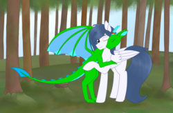 Size: 2835x1857   Tagged: safe, artist:dyonys, oc, oc:fridis, oc:graceful motion, dragon, pegasus, pony, eyes closed, female, forest, hug, male, mare, one eye closed, spread wings, wings
