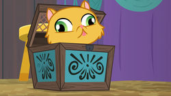 Size: 3360x1888 | Tagged: safe, artist:paganmuffin, edit, edited screencap, screencap, derp cat, cat, grannies gone wild, growing up is hard to do, spoiler:s09e22, :p, absurd resolution, animal, box, derp, goldie delicious' cats, pet, silly, sitting, solo, tongue out, vector, wall eyed