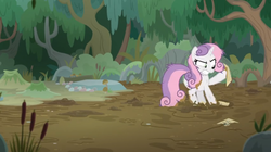 Size: 1600x894 | Tagged: bush, cattails, dirt, frustrated, growing up is hard to do, mud, muddy, muddy hooves, older, older sweetie belle, paper, safe, screencap, spoiler:s09e22, sticky, stuck, swamp, sweetie belle, tree