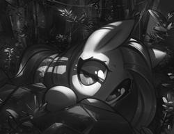 Size: 1600x1237   Tagged: safe, artist:mirroredsea, fluttershy, pegasus, pony, female, forest, looking at you, mare, monochrome, peeking, solo