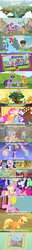 Size: 1280x10121 | Tagged: safe, edit, edited screencap, screencap, apple bloom, applejack, barley barrel, big macintosh, bright mac, bulk biceps, carrot cake, clear sky, cup cake, fluttershy, gallus, garble, granny smith, huckleberry, mayor mare, november rain, ocellus, pickle barrel, pinkie pie, rainbow dash, rarity, sandbar, scootaloo, silverstream, smolder, snails, snips, spike, sweetie belle, twilight sparkle, wind sprint, yona, zecora, alicorn, bee, parasprite, pony, unicorn, common ground, friendship is magic, going to seed, rainbow falls, rainbow roadtrip, swarm of the century, sweet and smoky, the cutie mark chronicles, spoiler:rainbow roadtrip, spoiler:s09e06, spoiler:s09e09, spoiler:s09e10, brother and sister, comic, cutie mark crusaders, father and son, female, food, friendship student, golden oaks library, honey, hoofbump, hug, intro, male, mane six, mother and daughter, photo, ponyville, screencap comic, siblings, silly, silly pony, student six, the berenstain bears, twilight sparkle (alicorn), unicorn twilight