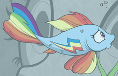 Size: 240x156 | Tagged: safe, artist:skitter, idw, rainbow dash, fish, goldfish, spoiler:comic, spoiler:comic78, cropped, female, fishified, rainbow trout, solo, species swap