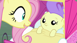 Size: 1920x1080 | Tagged: safe, screencap, angel bunny, cream puff, fluttershy, pony, she talks to angel, spoiler:s09e18, baby, baby pony, body swap, female, foal, mare