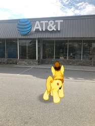 Size: 3024x4032   Tagged: safe, photographer:undeadponysoldier, braeburn, earth pony, pony, at&t, augmented reality, building, gameloft, irl, male, photo, ponies in real life, solo, stallion