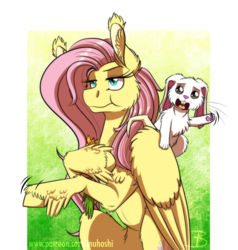 Size: 1124x1181   Tagged: safe, artist:inuhoshi-to-darkpen, angel bunny, fluttershy, pegasus, pony, rabbit, she talks to angel, animal, body swap, duo, ear tufts, feathered fetlocks, female, flower, hoof hold, male, mare, paws, simple background, transparent background, unamused, underpaw, unshorn fetlocks, wing claws