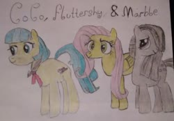 Size: 960x667 | Tagged: safe, artist:xpstar214, coco pommel, fluttershy, marble pie, army of cuteness, cocobetes, cute, group, marblebetes, shyabetes, the council of shy ponies, traditional art