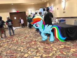 Size: 4032x3024 | Tagged: safe, photographer:undeadponysoldier, rainbow dash, human, pegasus, pony, augmented reality, clothes, convention, cosplay, costume, dealer room, exit sign, female, gameloft, ichibancon, irl, irl human, luigi, mare, photo, ponies in real life, super mario bros.