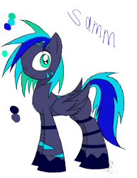 Size: 888x1150   Tagged: safe, artist:didun850, oc, oc:samm, pegasus, pony, colored hooves, signature, simple background, solo, transparent background
