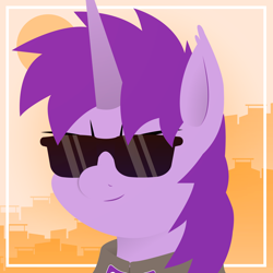 Size: 1920x1920 | Tagged: safe, artist:poniroxo, oc, oc:poniroxo, pony, unicorn, commission, eye, eyes, male, photo, purple, solo, summer, sun, sunglasses