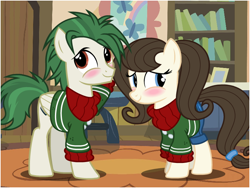 Size: 800x600 | Tagged: safe, artist:flash equestria photography, oc, oc only, oc:dizzy strings, oc:radiant nimbus, earth pony, pegasus, pony, blue eyes, blushing, bookshelf, brown mane, clothes, cutie mark, cutie mark on clothes, green mane, indoors, looking away, matching outfits, photo, show accurate, sweater