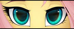 Size: 1020x405 | Tagged: safe, artist:vird-gi, fluttershy, pegasus, pony, close-up, eye, eyes, female, looking at you, mare, solo