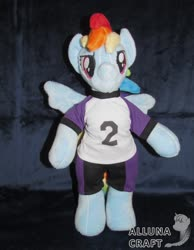 Size: 1024x1320 | Tagged: safe, artist:allunacraft, rainbow dash, pony, semi-anthro, anthro plushie, bipedal, clothes, female, irl, mare, pants, photo, plushie, shirt, solo, spread wings, wings