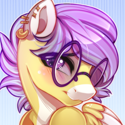 Size: 600x600 | Tagged: safe, artist:cabbage-arts, oc, oc:spunky dart, pegasus, bust, cute, glasses, male, portrait, shy, stallion