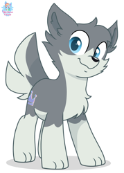 Size: 1204x1682 | Tagged: safe, artist:rainbow eevee, oc, oc only, oc:flow, wolf, wolf pony, barely pony related, beautiful, beautiful eyes, blue eyes, chest fluff, cute, daaaaaaaaaaaw, looking at you, pale belly, paws, simple background, solo, transparent background, vector