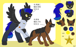 Size: 1465x900 | Tagged: safe, artist:99999999000, oc, oc:mar feng ren, dog, pegasus, pony, angry, chinese, clothes, female, fierce, gun, police officer, reference sheet, weapon