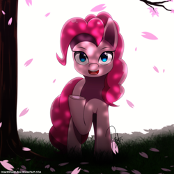 Size: 1500x1500 | Tagged: safe, artist:drakesparkle44, pinkie pie, earth pony, pony, cherry blossoms, cute, dappled sunlight, diapinkes, female, flower, flower blossom, looking at you, mare, open mouth, raised hoof, sakura pie, solo, tree