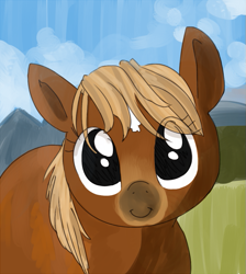 Size: 635x708 | Tagged: safe, artist:tilling-tan, oc, oc only, earth pony, pony, /mlp/, 4chan, c:, cute, drawthread, looking at you, ocbetes, ponified, ponified animal photo, ponified horse, sergeant reckless, smiling, solo