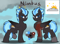 Size: 4680x3424 | Tagged: safe, artist:beardie, oc, oc:nimbus, pegasus, pony, clothes, color palette, colored wings, cutie mark, gradient wings, jacket, looking at you, male, reference sheet, side view, stallion, two toned mane, two toned tail, wings