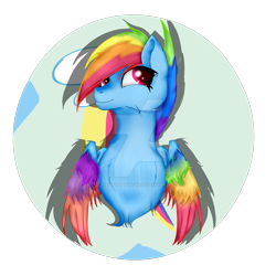 Size: 1920x1920 | Tagged: safe, artist:misfitofshadows, rainbow dash, pegasus, pony, leak, spoiler:g5, bust, colored wings, female, g5, mare, multicolored wings, rainbow dash (g5), rainbow wings, redesign, wings