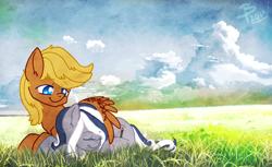 Size: 1678x1024   Tagged: safe, artist:flutterbree, oc, oc:6pony66, oc:flutterbree, earth pony, pegasus, cloud, cute, field, scenery