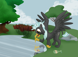 Size: 4172x3038 | Tagged: safe, artist:sixes&sevens, thunderlane, griffon, bottle, cattails, cloud, faded cutie mark, griffonized, implied flim flam brothers, lake, outdoors, pointing, reflection, rock, shocked, species swap, spread wings, transformation, tree, wings