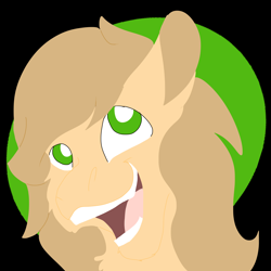 Size: 2000x2000   Tagged: safe, artist:euspuche, oc, oc only, oc:aguacate, bust, lineless, looking at you, portrait