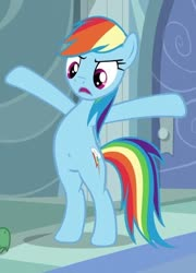 Size: 514x715 | Tagged: safe, edit, edited screencap, screencap, rainbow dash, pegasus, pony, tanks for the memories, /mlp/, belly button, bipedal, cropped, solo, standing
