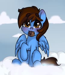 Size: 1000x1150 | Tagged: safe, artist:cottonsweets, oc, oc:pegasusgamer, pegasus, blushing, chest fluff, cloud, cookie, food, leg fluff, looking at you, sitting, sky, wings