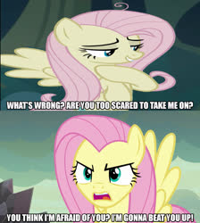 Size: 1280x1429 | Tagged: safe, edit, edited screencap, screencap, fluttershy, mean fluttershy, pegasus, pony, sweet and smoky, the mean 6, spoiler:s09e09, caption, clone, female, image macro, mare, meme, text, wrong aspect ratio