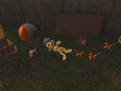Size: 1024x768 | Tagged: safe, artist:horsesplease, party favor, 3d, ball, balloon, balloon animal, doggie favor, gmod, herd, lying down, sheepdog, supine